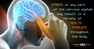 stress-on-nervous-system