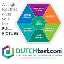 dutch test pic1